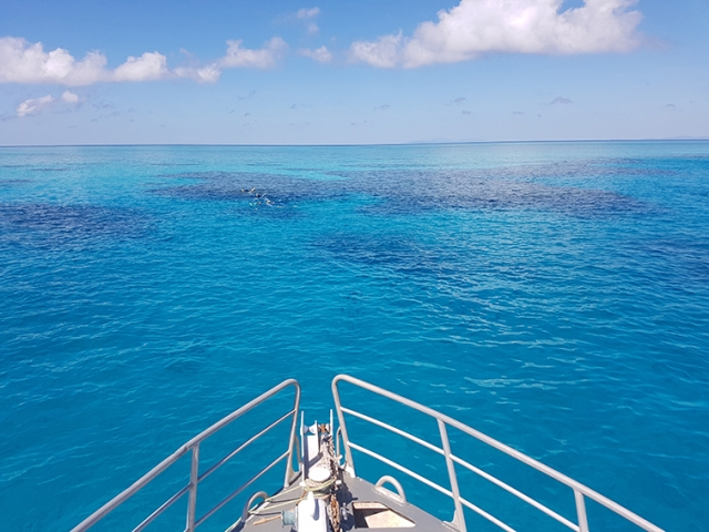 Looking out from the bow of Adrenalin Dive Vessel at the Great Barrier Reef, out of Townsville