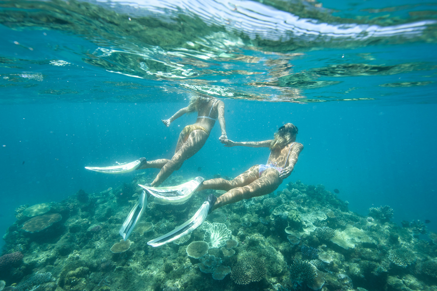 Snorkelling the Great Barrier Reef with Adrenalin Dive