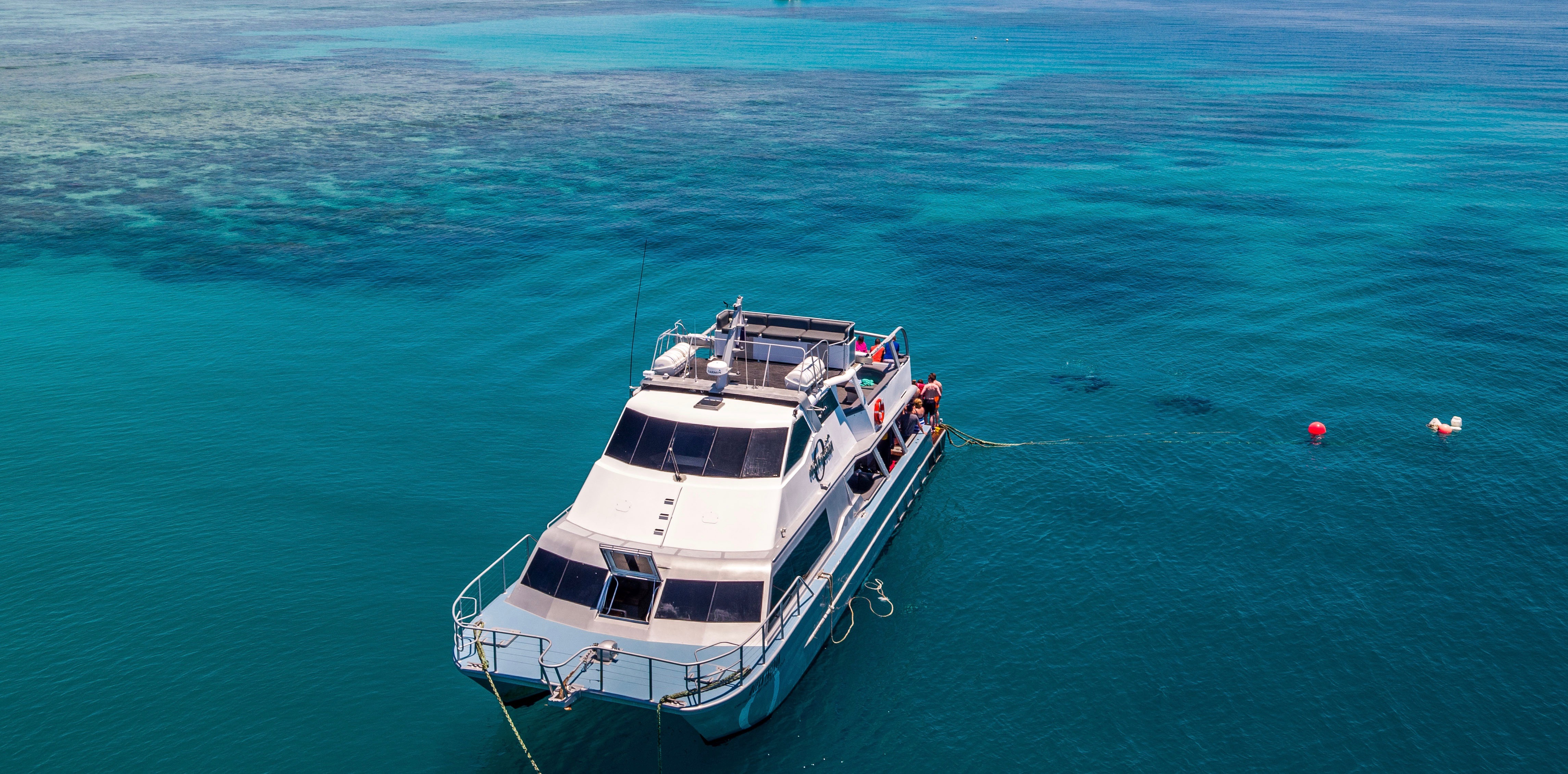 Ocean Freedom is a 20 metre luxury motor catamaran. Check in at Reef Fleet Terminal from 7.15am at Ocean Free + Ocean Freedom desk. Board from 7.30am A Finger No. 5 at the Marlin Marina, Cairns for an 8am departure – coffee, tea and Danish pastries and fresh fruit served on boarding.