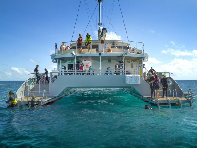 Experience the adventure of snorkelling, diving and sailing on the Great Barrier Reef with Passions of Paradise. The 25 metre high performance catamaran sails daily from Cairns to two unique outer reef locations, where you can dive and snorkel with turtles, colourful fish and see an amazing variety of corals.  Enjoy a personalised day on the Great Barrier Reef with a friendly crew dedicated to making your trip memorable and a local operator whose environmental credentials and attention to detail have earned many awards including the Australian Tourism Award for Adventure.