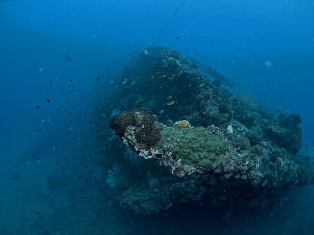The bow of the The Yongala shipwreck rests at about 12 metres with the ships hull resting on the ocean floor at about 30 metres