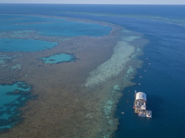 'Heart Pontoon' is our pontoon at The Great Barrier Reef, moored 39 nautical miles from mainland Australia. It provides a fun, interactive and safe way to explore the underwater world of Hardy Reef.